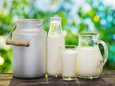 consumer-nps-study-of-a-subscription-based-dairy-player